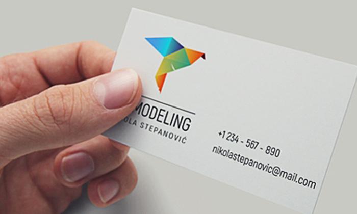 Izabran logo za NS 3D